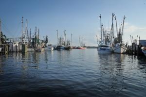 SG.seafood.2155